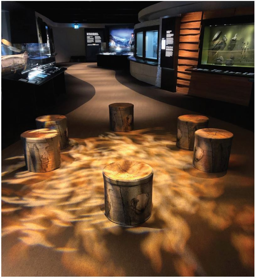 An exhibit showing six artificial log stumps with wavy lighting effect