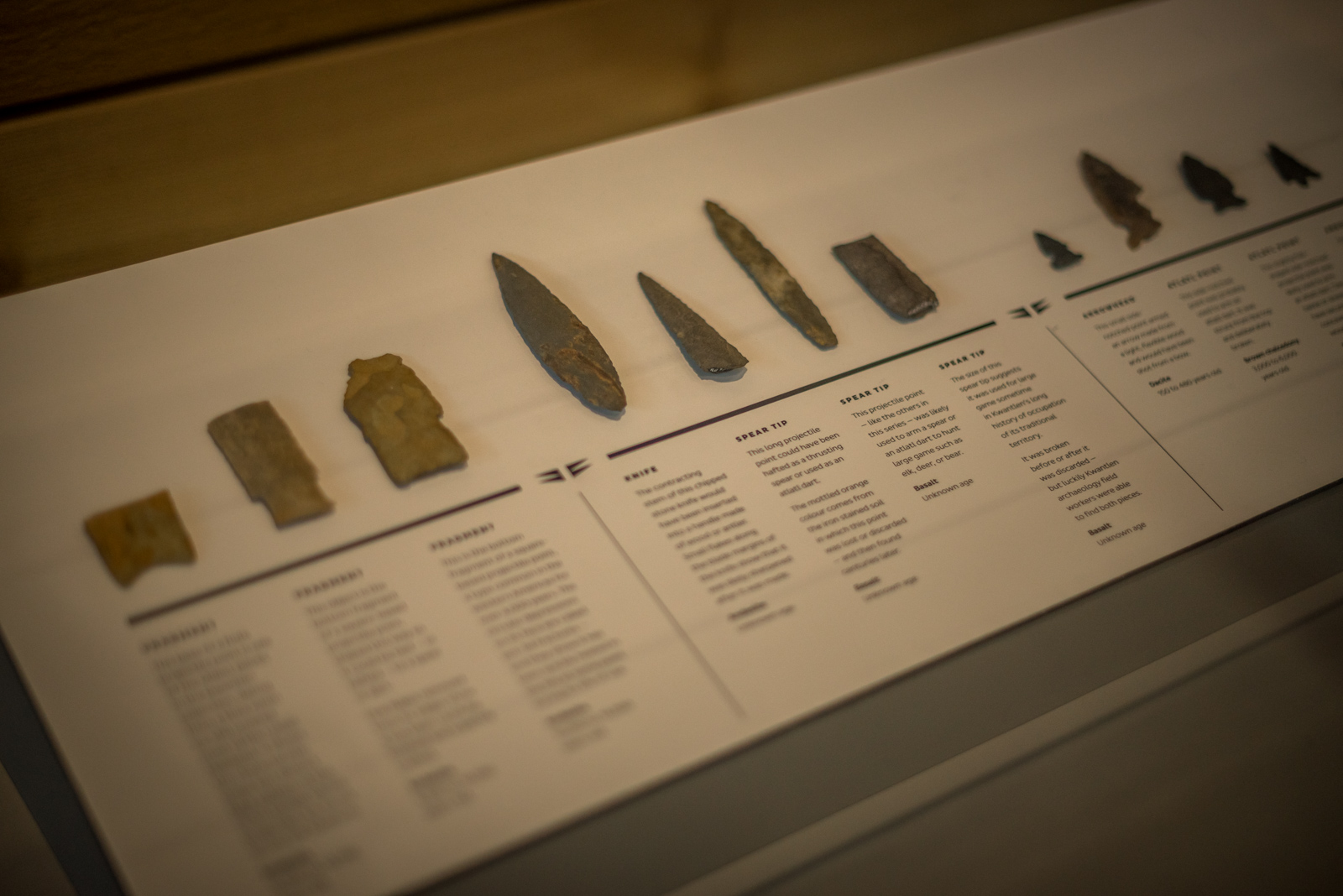 Arrow heads on display in the 'Surrey Stories Gallery'