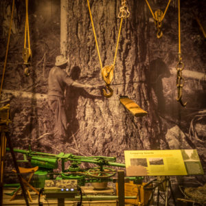 A display of lumber equipment in the 'Surrey Stories Gallery'