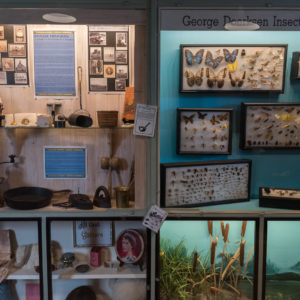 Permanent display cabinets