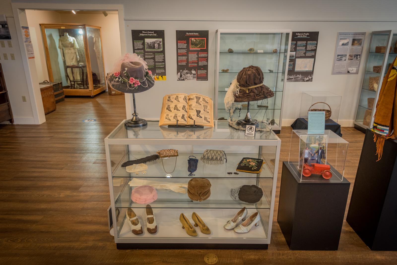Agassiz-Harrison Museum